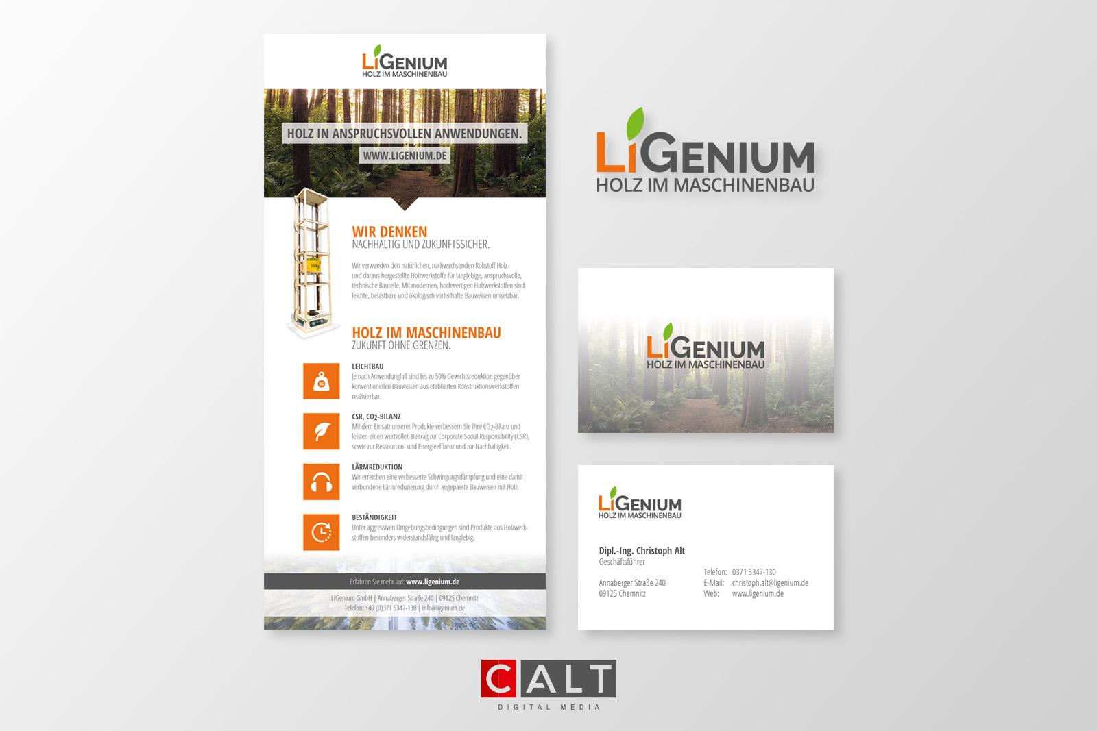 Calt Digital Media Corporate Design Für Ligenium Gmbh